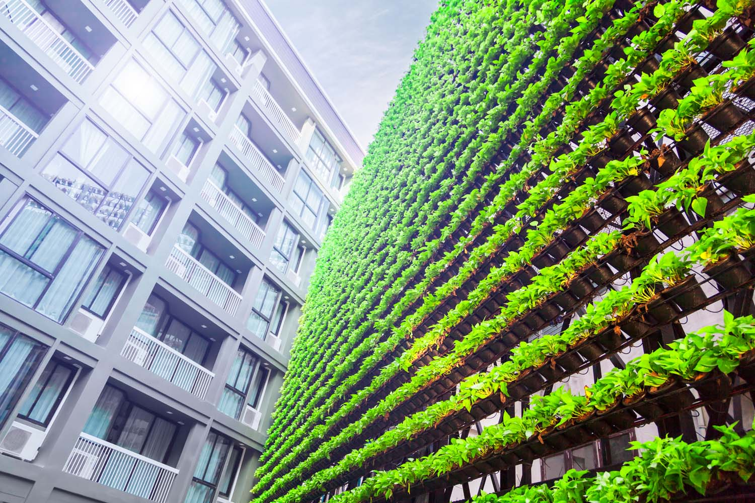 Business Value & Challenges in Sustainability
