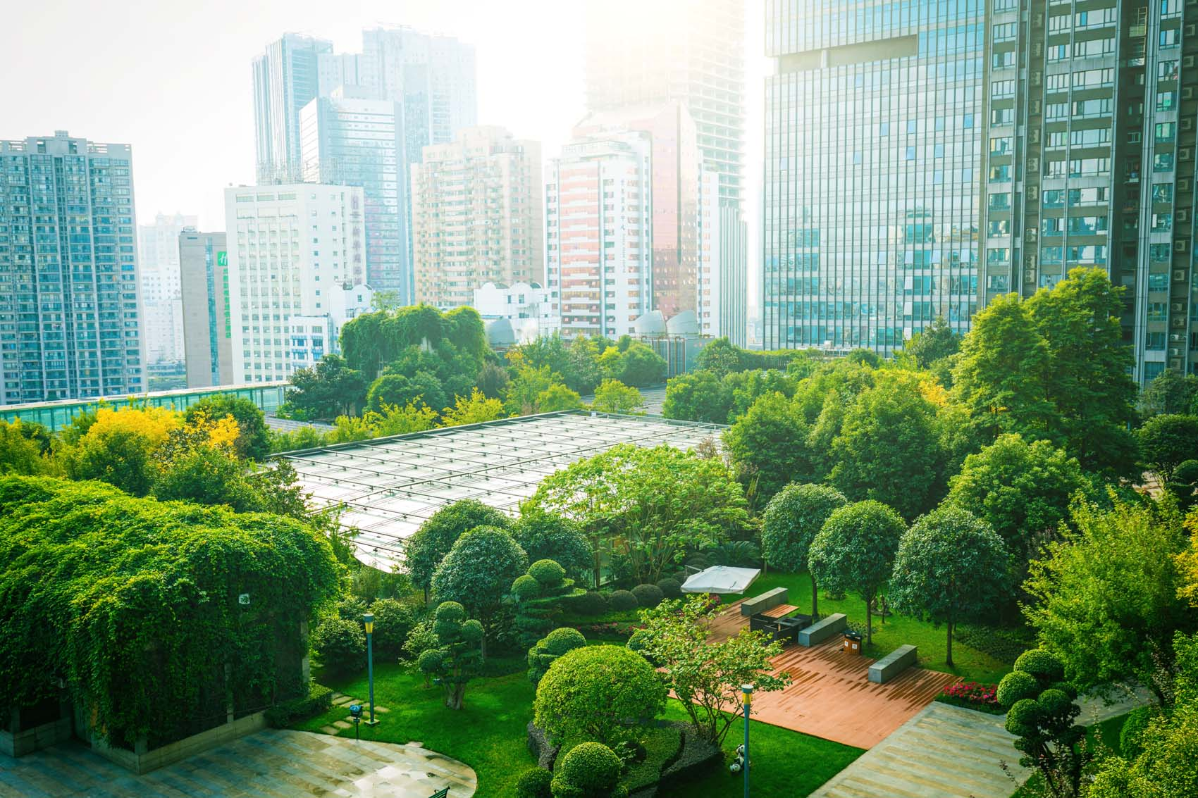 ESG Strategy: Setting the Foundation for Long-Term Success