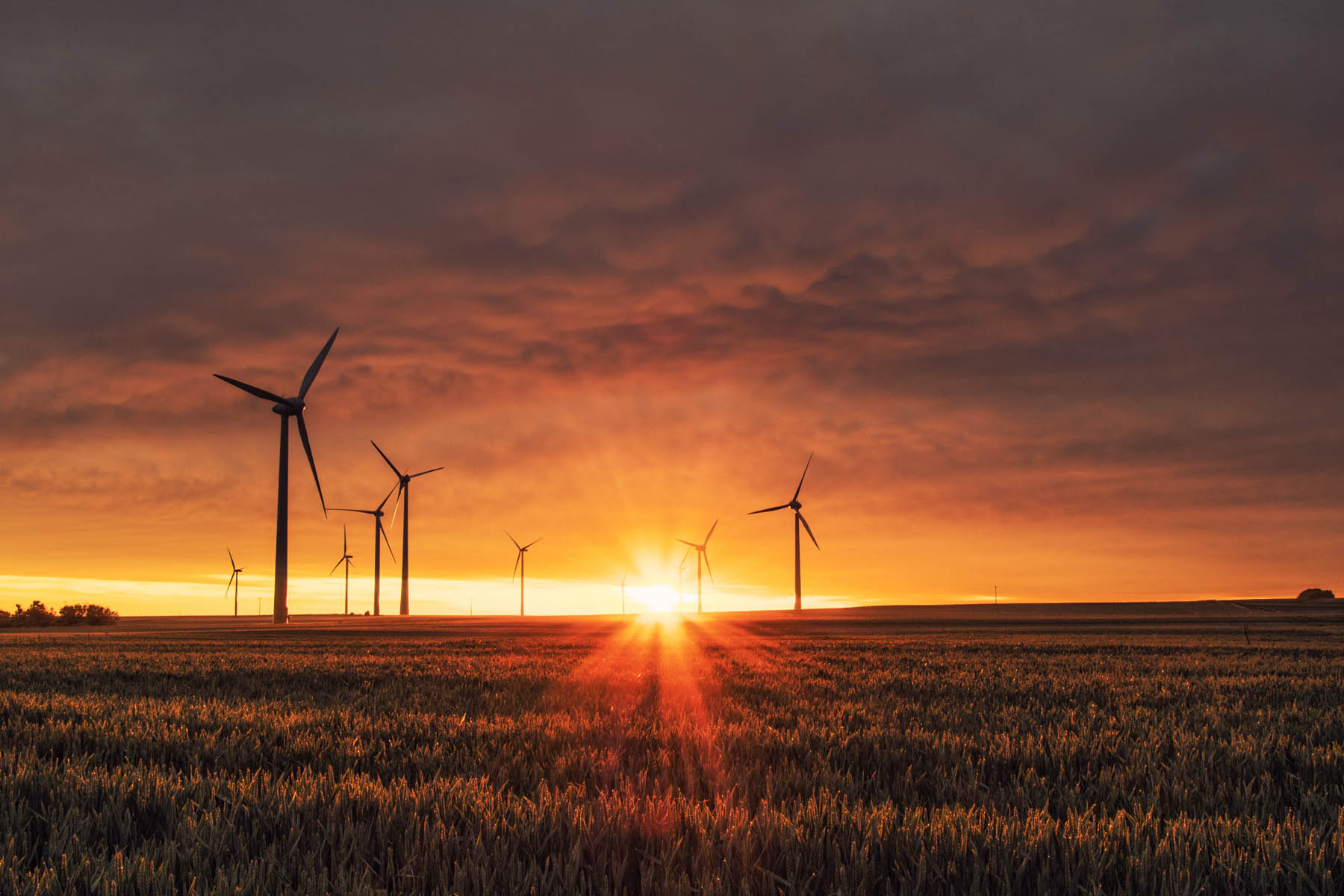 Evaluating Sustainability of Wind Energy: Fact-Based Insights Through LCA
