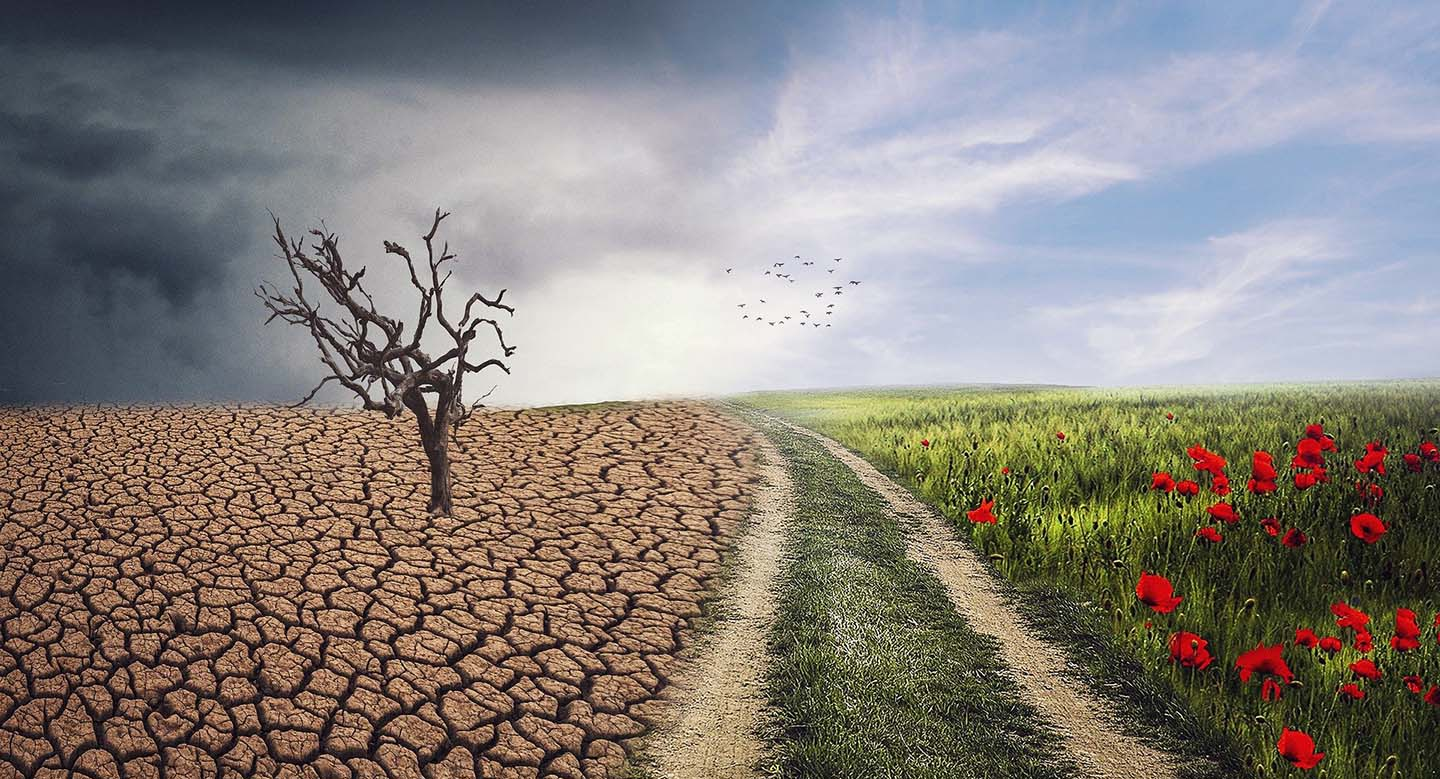 The IPCC Report's a 'Code Red'? Well, Enough Said